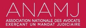 Logo ANAMJ